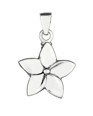 colgante-plata-cenizas-flor-5