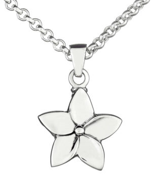 colgante-plata-cenizas-flor-5-con-cadena
