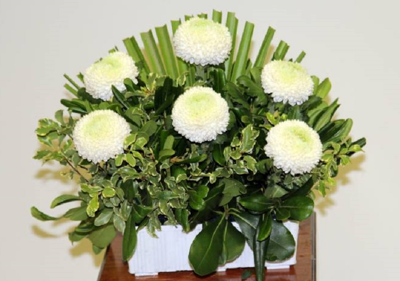 17 Flores Para Funeral Como Elegir La Indicada Y Por Qué